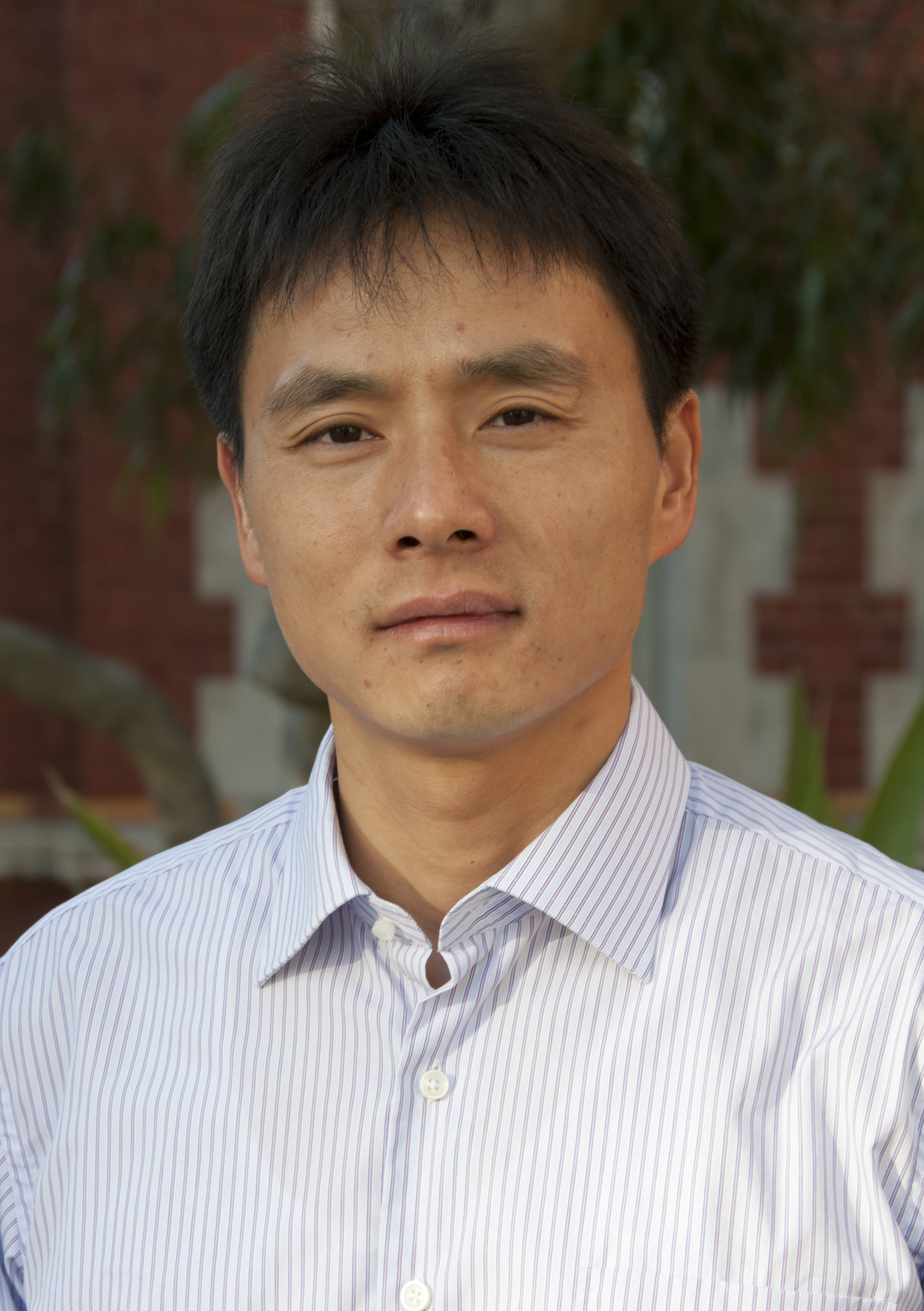 Profile picture of Yi Yang