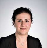 Fatemeh Malekipour's Profile Picture