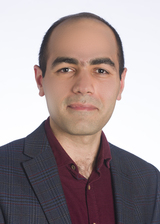 Saeed Miramini's Profile Picture
